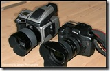 Hasselblad and 5D - 2