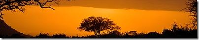 Kenya banner. Flemming Bo Jensen Photography
