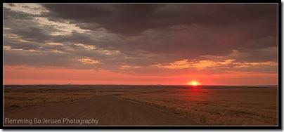 Namib desert into the sun 1. Flemming Bo Jensen Photography