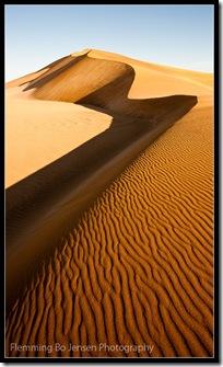 Dunescape. Flemming Bo Jensen Photography