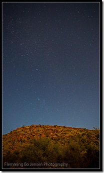 Moonlit Namibia Veld