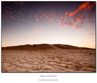 Magic of the desert -blog