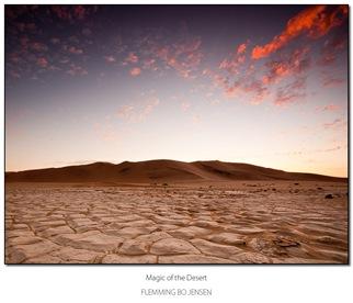 Magic of the desert -blog
